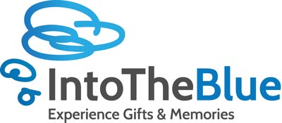 Into the blue coupon codes